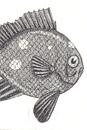 Pen and Ink Drawing of Stylised Coralfish