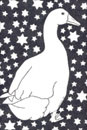 Pen and Ink Drawing of Birds - Star Goose