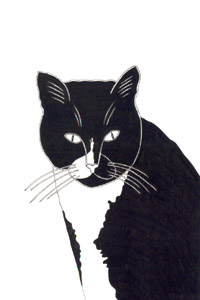 Pen and Ink Drawing  Animals - Black and White Cat Tiggy